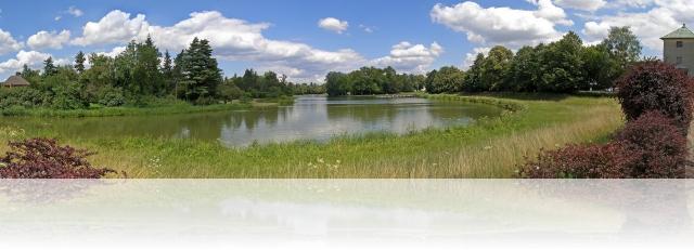 Panorama am Wörlitzer Park