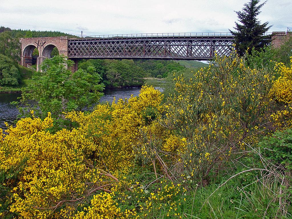 Eisenbahnbrücke über Kyle of Sutherland
