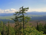 Strbske Pleso - Blick auf die niedere Tatra